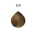 evo-6-31