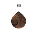 evo-6-5