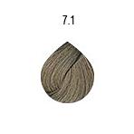 evo-7-1