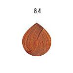 evo-8-4
